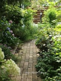 あじさいも終盤に・・家の中でも楽しむハーフバースデー - miyorinの秘密のお庭