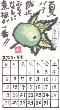 青葉2020年7月「煮梅」 - ムッチャンの絵手紙日記