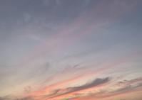 風のおにぎり - アガパンサス日記(ダイアリー)