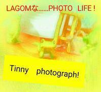 Scene   (40) - LAGOMな……PHOTO   LIFE !