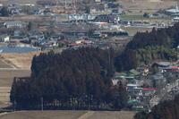 早春の鬼怒川線- 2020年・東武鬼怒川線 - - ねこの撮った汽車