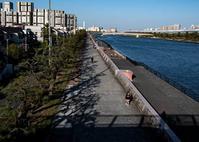 我が街散策(8) - 写真の散歩道