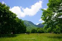 長野市戸隠牧場その2 - 野沢温泉とその周辺いろいろ2