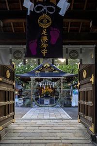 夏越の大祓(護王神社・北野天満宮) - 花景色-K.W.C. PhotoBlog