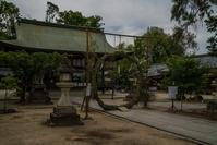 今宮神社~茅の輪くぐり - 鏡花水月
