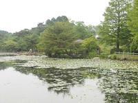 野呂山氷池 - 静かに過ごす部屋