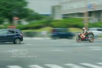 BAIKU DE GO! - Rey Photo