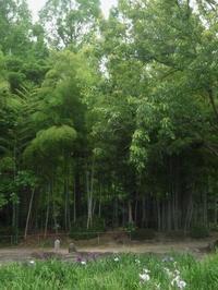 須磨離宮公園散策・・♪ - アンティーク 日々の暮らしを楽しむ
