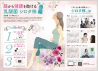 ヤクルトシロタ株タイムズ - まゆみん MAYUMIN Illustration Arts