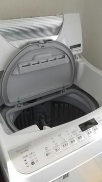 洗濯機を21年ぶりに買い替えました♪ - 猫と私の好きなもの
