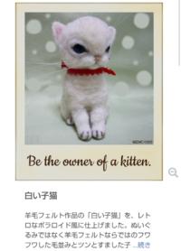 羊毛フェルト「白い子猫」グッズ販売 - 月の旅人~美月ココの徒然日記~