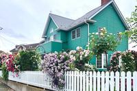 ブログでオープンガーデン2020⑥ 〜レイニーブルーから レンガの壁までのバラ〜 - 薪割りマコのバラの庭