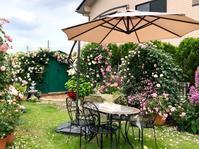 ブログでオープンガーデン2020⑦〜2つのベンチアーチからグリーンの倉庫までのバラ達♡〜 - 薪割りマコのバラの庭