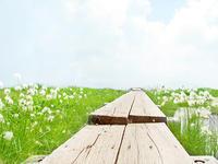 人生は選択 〜コロサイ人への手紙 3章12〜17 - 新しい歌を歌おう