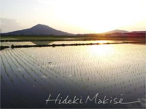 糸島田園夕照 - My Filter     a les  co les   Photographies
