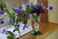 花を飾る - 日々の宝物