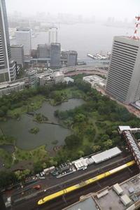 梅雨空の東京に黄色い新幹線- 2020年梅雨・ドクターイエロー - - ねこの撮った汽車