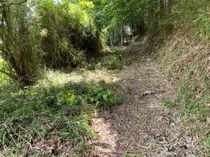 昔の風景に戻すのだ - 自力施業型小規模森林所有者 奥山林業