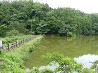 梅雨最盛期、50mmを超えました - 千葉県いすみ環境と文化のさとセンター