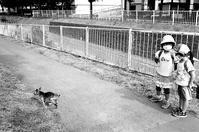 下校時の女児と政権から距離をとる兆しの医師会 - 照片画廊