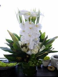 フランス料理店のオープンにアレンジメント。「白ベースで」。函館市元町に発送。2020/06/23着。 - 札幌 花屋 meLL flowers
