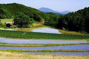 糸島の景~いとしまのしらべ~⑬ - 糸島の景~いとしまのしらべ~