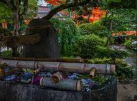 上賀茂神社~茅の輪くぐり・花手水 - 鏡花水月