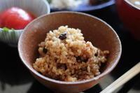 発酵玄米 - sakamichi
