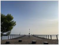 さくらと大と、早朝からの朝んぽ~海の見える港園は風も気持ち良かったね~ - さくらおばちゃんの趣味悠遊