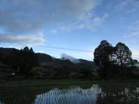 雨上がりの朝散歩 - 南阿蘇 手づくり農園 菜の風