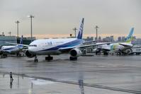 2019年11月羽田遠征 その21 ANA B777-200ERのスポットイン - 南の島の飛行機日記