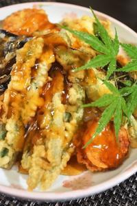 ■昼丼【菜園採り野菜だけの天丼/明太乗せ奴】 - 「料理と趣味の部屋」