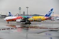 2019年11月羽田遠征 その22 沖止めの飛行機たち - 南の島の飛行機日記