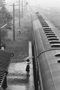 昔、機関区駅で出会った車輌達(42)土讃線 雨の土佐一宮駅 - 南風・しまんと・剣山 ちょこっと・・・