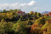 小さな村の物語イタリア6/28アンコール放送(第281回) - 伝統菓子と家庭菓子の研究ノート