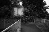 埋まる - 節操のない写真館
