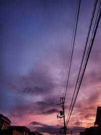6月30日今日の写真 - ainosatoブログ02