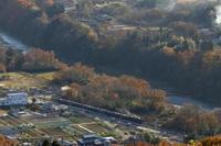 彩りの秋を彩る陽射し- 2019年・秩父鉄道 - - ねこの撮った汽車
