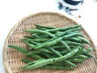 自家栽培の野菜はとても美味しい! - やさしい光のなかで