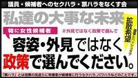 公営掲示板にセクハラ・ポスター(都議補選) - FEM-NEWS