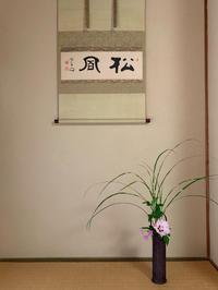 六月最後の茶道教室のこと - orihime's cafe