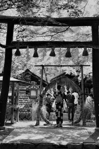 野宮神社 - Taro's Photo
