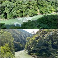 「どこかにマイル」で宮崎へ…その2綾の照葉大吊橋 - アキタンの年金&株主生活+毎月旅日記