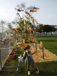七夕の日に 「竹、笹リレー」 - 十色生活