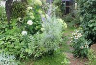 収穫時 - 絵と庭