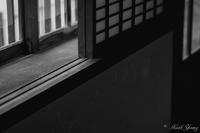 窓辺に佇む - SCENE