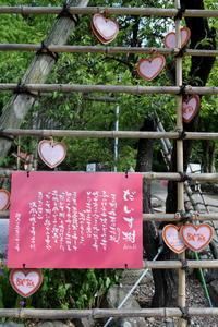 長野そぞろ歩き・小布施:浄光寺 - 日本庭園的生活
