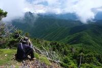 オオヤマレンゲの視察に (後編) - ratoの山歩き