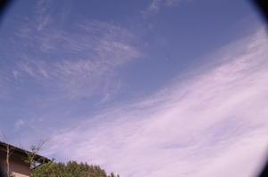 7月2日早朝トレッキング:白雲たなびく -