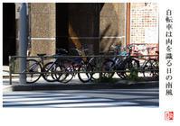 自転車は肉を識る日の南風 - 風と光の散歩道、有希編2a